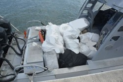 Over 900 lbs. of Ganja Recovered