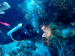 CCMI's Reef Lecture Series to Feature Visiting Researcher