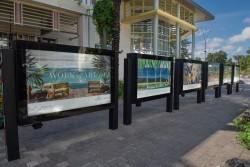 Provenance Properties Cayman Islands sponsors National Gallery exhibit to celebrate local ar