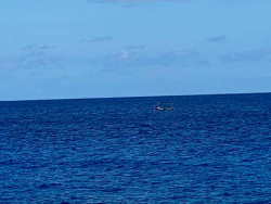 Migrant Vessel Spotted off Cayman Brac